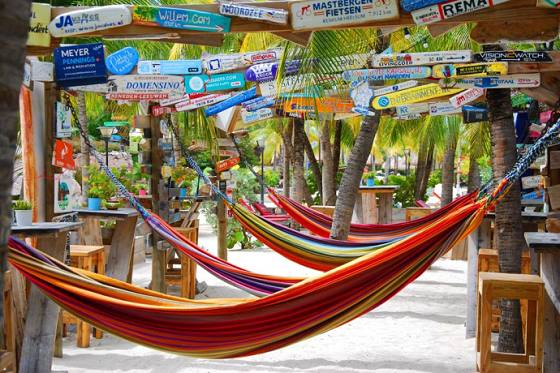 Enjoy the hammock